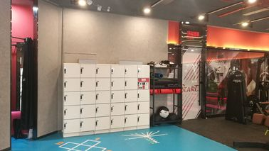 China White Storage Locker For School , 4 Tier Plastic Gym Lockers With Software supplier