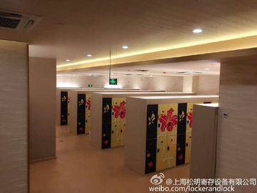 China SPA IOT Locker 6 Comparts  3 Column Double Tier Lockers With Print Picture Door supplier